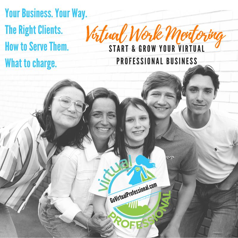 Virtual Work Mentoring